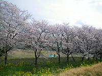 2012_0415_142139imgp2949