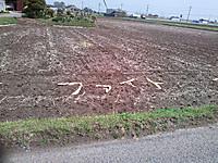 Nagorinosakura12