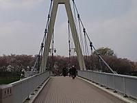 Nagorinosakura7