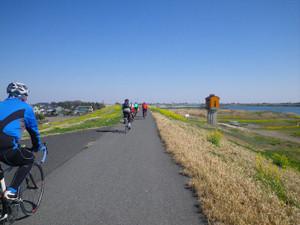 Akaiwatua12